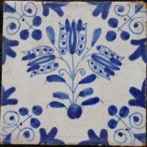 blauwe_drietulp front